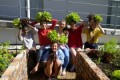 Integrating the Environment into life at St Cyprians School