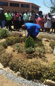 Free State Diocesan Sunday School plants a tree