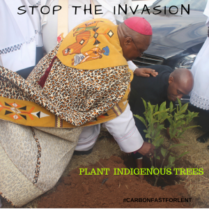 STOP THE INVASION (1)