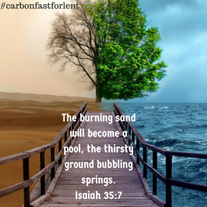 The burning sand will become a pool, the thirsty ground bubbling springs. Isaiah 35-7
