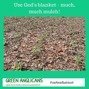 Use GOds blanket march 18