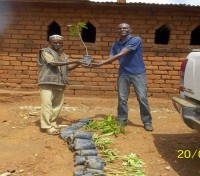 THE SPIRIT OF GREEN ANGLICANS IS TAKING ROOT IN MALAWI!