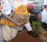 Tree planting at the Diocese of Umzimvubu's Family day