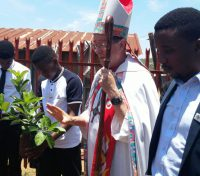 Plant a confirmation tree continues: Baobab Mission Parish