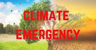 The Anglican Church of Southern Africa declares a Climate Emergency