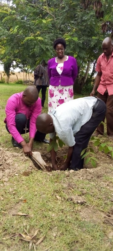 Joining hands from Mozambique, Ghana, Kenya and Malawi to plant trees