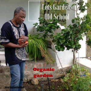 Lets garden old school