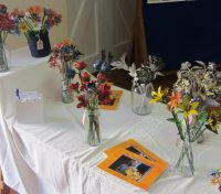 Eco Fair at Christ Church, Constantia
