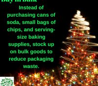 Green Christmas Tips : 12 December 2016