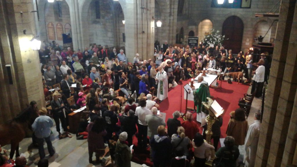 Blessing of AnimalsService: St Georges Cathedral Cape Town