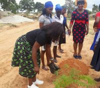 Young womens network embraces Green in My habitat in Angola
