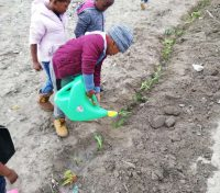From Illegal Dumpsite to Childrens garden